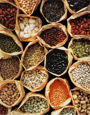 Beans02